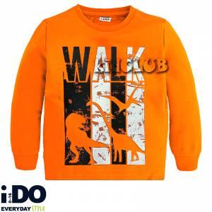 Μπλούζα μακρυμάνικη αγορίστικη με στάμπα Dinos IDO